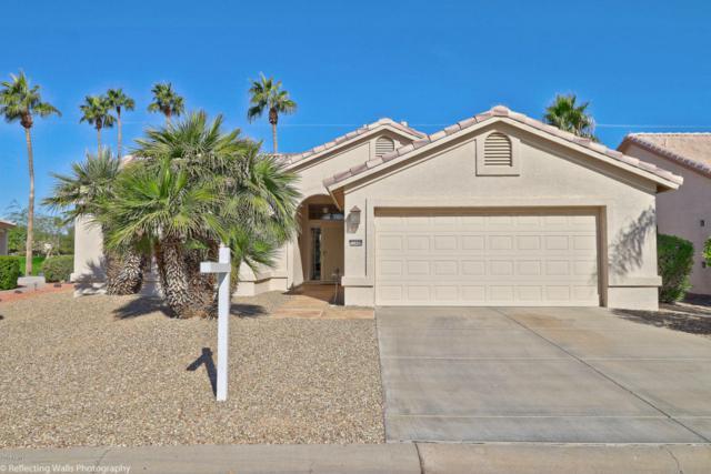 15440 W Merrell Street, Goodyear, AZ 85395 (MLS #5694229) :: Desert Home Premier