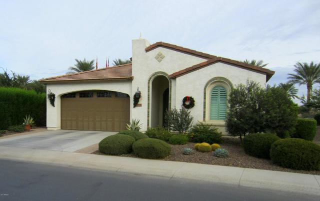 37371 N Wild Barley Path, San Tan Valley, AZ 85140 (MLS #5694439) :: Yost Realty Group at RE/MAX Casa Grande