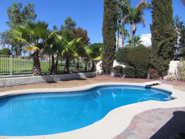 6752 W Morrow Drive, Glendale, AZ 85308 (MLS #5694630) :: Essential Properties, Inc.