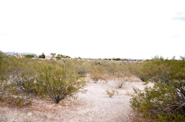 35525 S Antelope Creek Road, Wickenburg, AZ 85390 (MLS #5694694) :: The Wehner Group