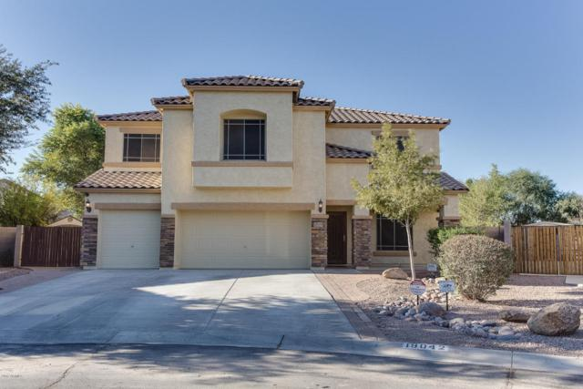 19042 N Ibis Way, Maricopa, AZ 85138 (MLS #5694827) :: The Everest Team at My Home Group