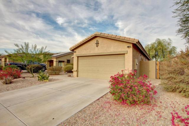 17524 W Canyon Lane, Goodyear, AZ 85338 (MLS #5694868) :: Essential Properties, Inc.