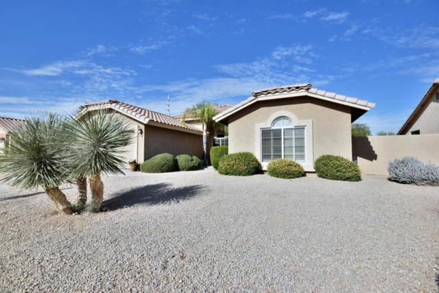 8718 W Sierra Pinta Drive, Peoria, AZ 85382 (MLS #5694870) :: Desert Home Premier