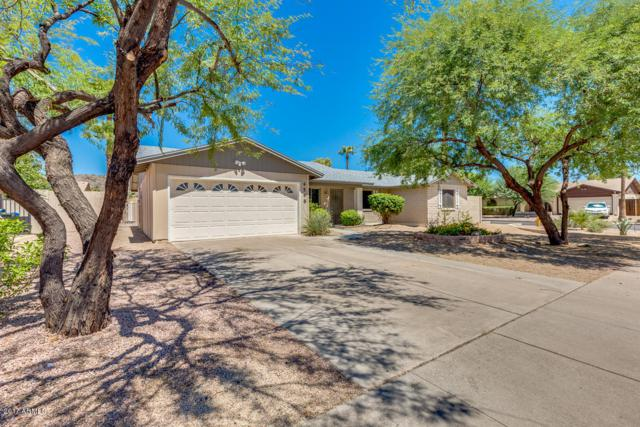 4548 E Alta Mesa Avenue, Phoenix, AZ 85044 (MLS #5695020) :: Brett Tanner Home Selling Team