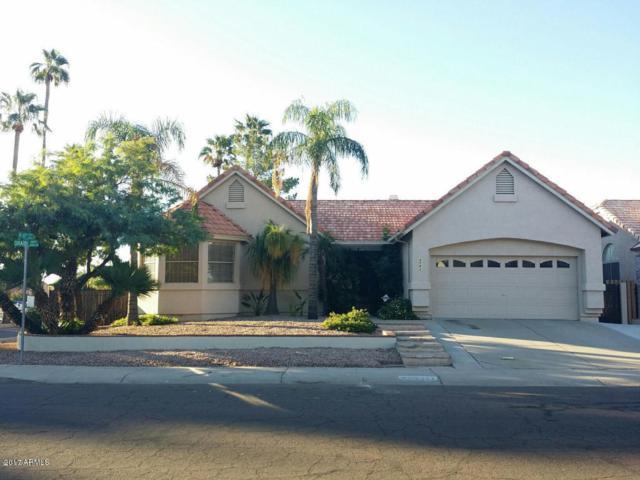 6903 W Oraibi Drive, Glendale, AZ 85308 (MLS #5695115) :: Essential Properties, Inc.