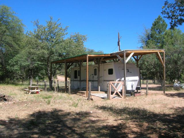 135 N Rifle Barrel Road, Young, AZ 85554 (MLS #5695131) :: My Home Group