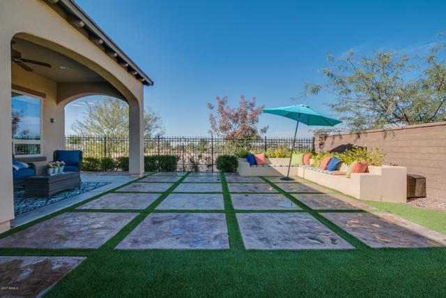 1266 E Elysian Pass, San Tan Valley, AZ 85140 (MLS #5695208) :: Yost Realty Group at RE/MAX Casa Grande