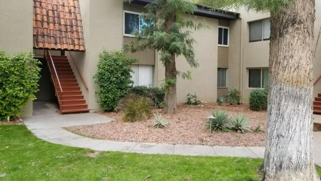 4201 E Camelback Road #9, Phoenix, AZ 85018 (MLS #5695349) :: Phoenix Property Group