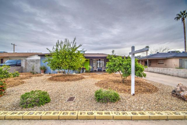 3629 E Yale Street, Phoenix, AZ 85008 (MLS #5695493) :: Occasio Realty