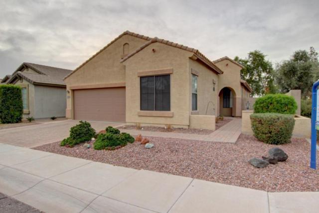 3002 S 102ND Lane, Tolleson, AZ 85353 (MLS #5695616) :: Group 46:10