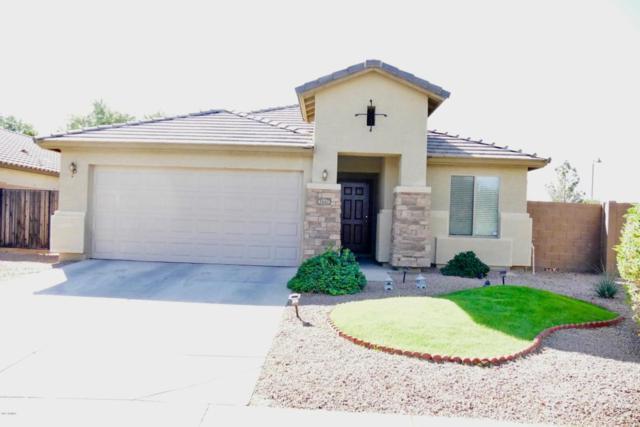 41779 W Somerset Drive, Maricopa, AZ 85138 (MLS #5695744) :: Realty Executives