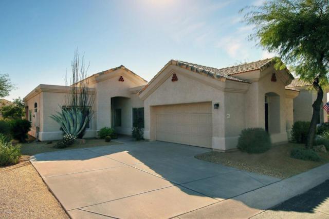 4711 E Casey Lane, Cave Creek, AZ 85331 (MLS #5695760) :: Arizona Best Real Estate