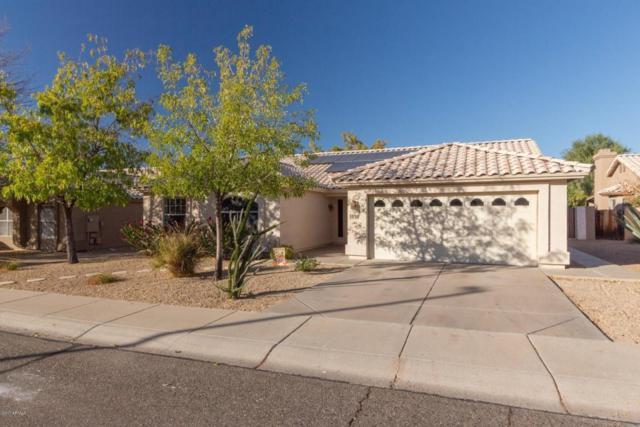 5910 W Blackhawk Drive, Glendale, AZ 85308 (MLS #5695867) :: Essential Properties, Inc.