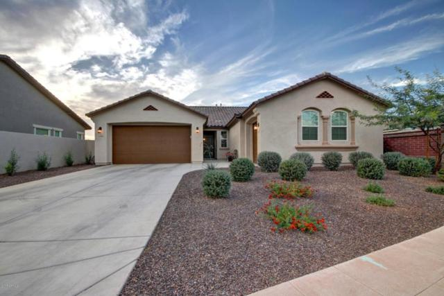 12306 N 152ND Drive, Surprise, AZ 85379 (MLS #5695950) :: Kortright Group - West USA Realty