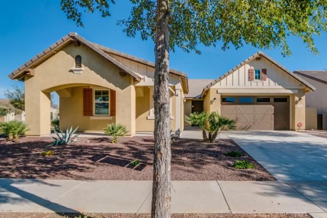 3293 N Springfield Street, Buckeye, AZ 85396 (MLS #5696059) :: Essential Properties, Inc.