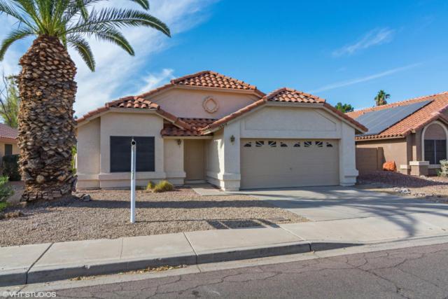 18916 N 68TH Avenue, Glendale, AZ 85308 (MLS #5696114) :: Essential Properties, Inc.