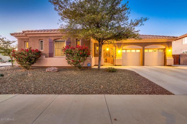 16892 W Jackson Street, Goodyear, AZ 85338 (MLS #5696118) :: Occasio Realty