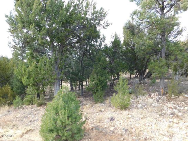 1536 Rocky Top Drive, Heber, AZ 85928 (MLS #5696180) :: The Garcia Group @ My Home Group