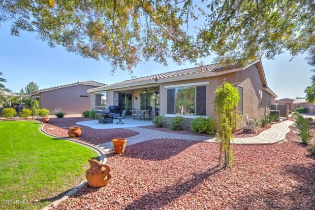 42808 W Whimsical Drive, Maricopa, AZ 85138 (MLS #5696368) :: Yost Realty Group at RE/MAX Casa Grande