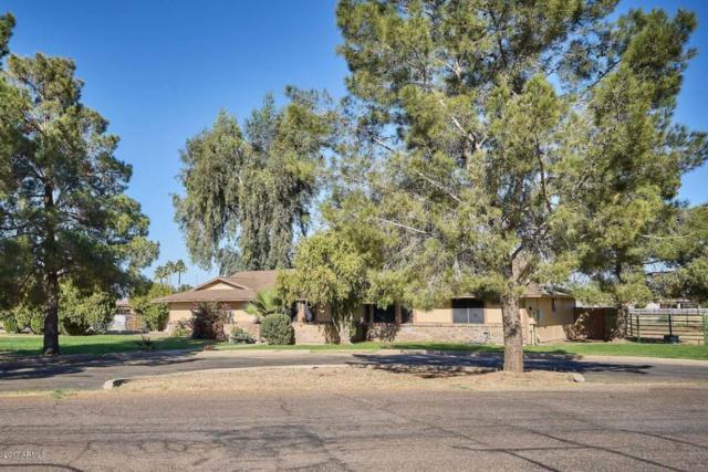 19202 E Via De Olivos, Queen Creek, AZ 85142 (MLS #5696401) :: The Pete Dijkstra Team