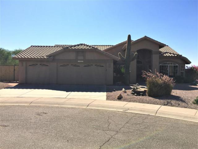 16248 S 14TH Drive, Phoenix, AZ 85045 (MLS #5696498) :: Jablonski Real Estate Group