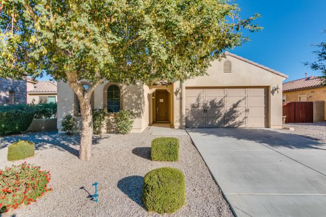 16966 W Rio Vista Lane, Goodyear, AZ 85338 (MLS #5696512) :: Kelly Cook Real Estate Group