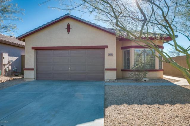 3559 W Morse Court, Anthem, AZ 85086 (MLS #5696518) :: Desert Home Premier