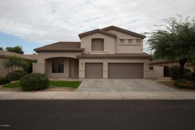 14566 W Mulberry Drive, Goodyear, AZ 85395 (MLS #5696521) :: Kelly Cook Real Estate Group