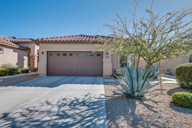 33121 N 40TH Place, Cave Creek, AZ 85331 (MLS #5696535) :: Arizona Best Real Estate