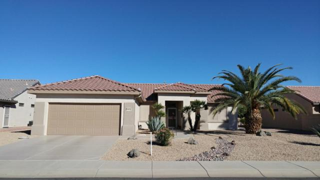 16102 W Quail Creek Lane, Surprise, AZ 85374 (MLS #5696605) :: Desert Home Premier