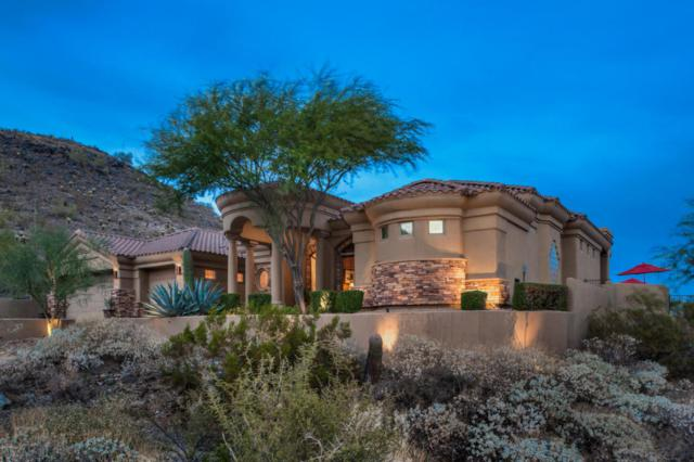 14021 S 19TH Street, Phoenix, AZ 85048 (MLS #5696611) :: The Wehner Group