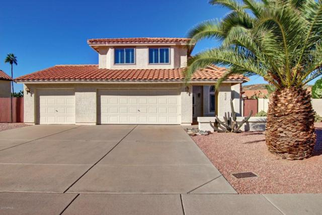 4110 E Cholla Canyon Drive, Phoenix, AZ 85044 (MLS #5696633) :: Jablonski Real Estate Group