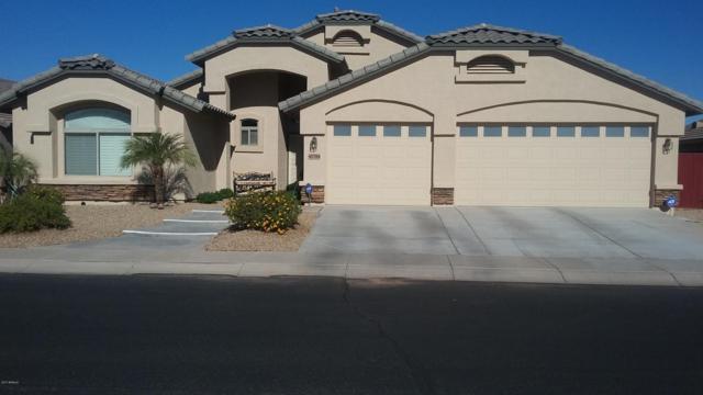 41784 W Bravo Court, Maricopa, AZ 85138 (MLS #5696738) :: Yost Realty Group at RE/MAX Casa Grande