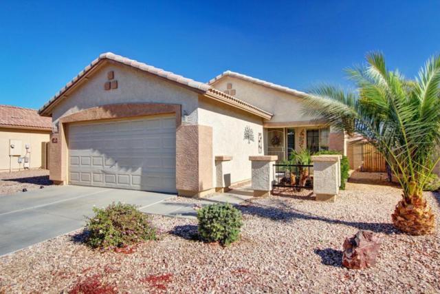 2071 S 217 Avenue, Buckeye, AZ 85326 (MLS #5696744) :: Kelly Cook Real Estate Group