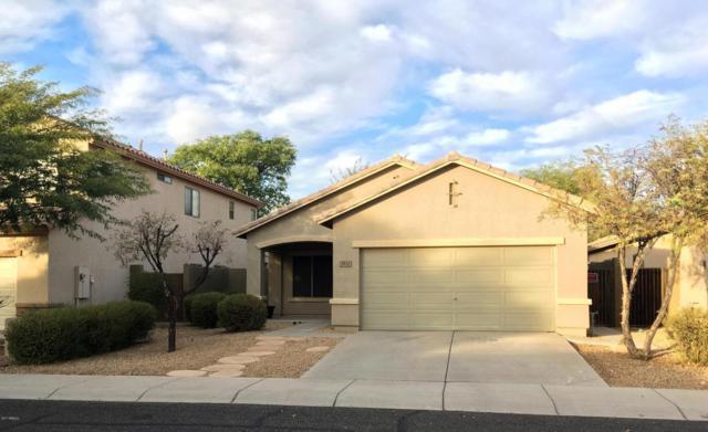 3532 W Twain Drive, Anthem, AZ 85086 (MLS #5696780) :: Desert Home Premier