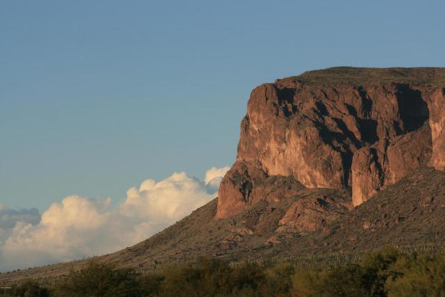 9034 E Canyon View Trail, Gold Canyon, AZ 85118 (MLS #5696951) :: Yost Realty Group at RE/MAX Casa Grande