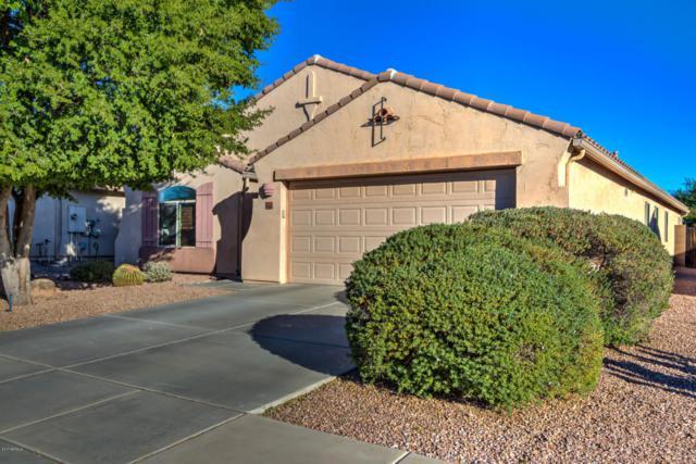 10425 E Dutchmans Trail, Gold Canyon, AZ 85118 (MLS #5696953) :: Yost Realty Group at RE/MAX Casa Grande