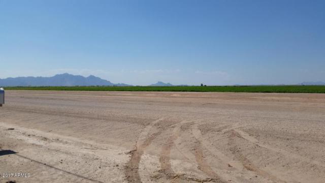 668 E Arica Road, Eloy, AZ 85131 (MLS #5696997) :: Yost Realty Group at RE/MAX Casa Grande