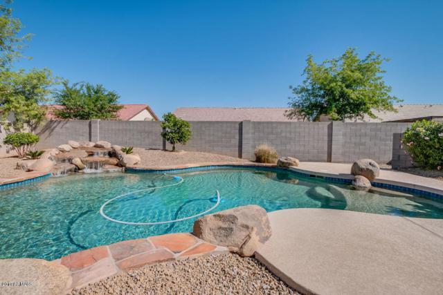 3682 E Sandwick Drive, San Tan Valley, AZ 85140 (MLS #5697065) :: Yost Realty Group at RE/MAX Casa Grande