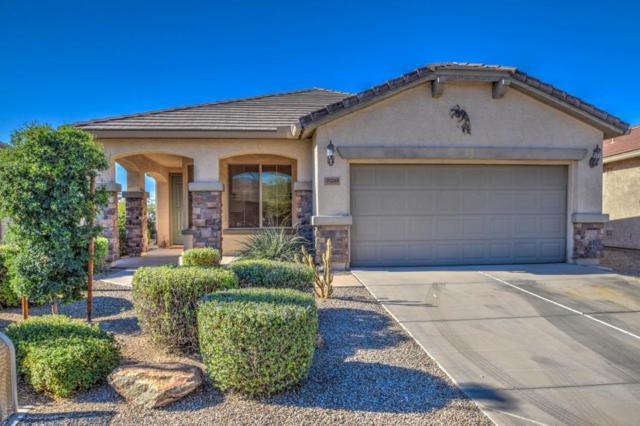 30248 N Bismark Street, San Tan Valley, AZ 85143 (MLS #5697068) :: Yost Realty Group at RE/MAX Casa Grande