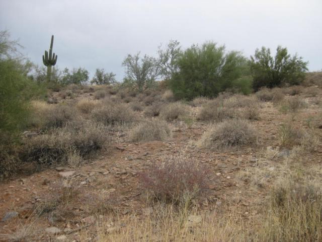 10228 N Fire Canyon, Fountain Hills, AZ 85268 (MLS #5697072) :: The Daniel Montez Real Estate Group