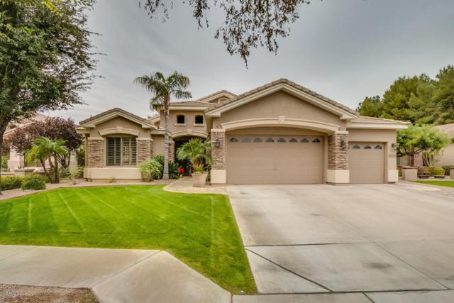 8026 S Stephanie Lane, Tempe, AZ 85284 (MLS #5697080) :: Kelly Cook Real Estate Group