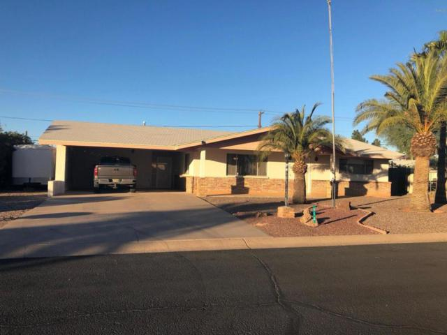 610 E Estevan Avenue, Apache Junction, AZ 85119 (MLS #5697093) :: Realty Executives