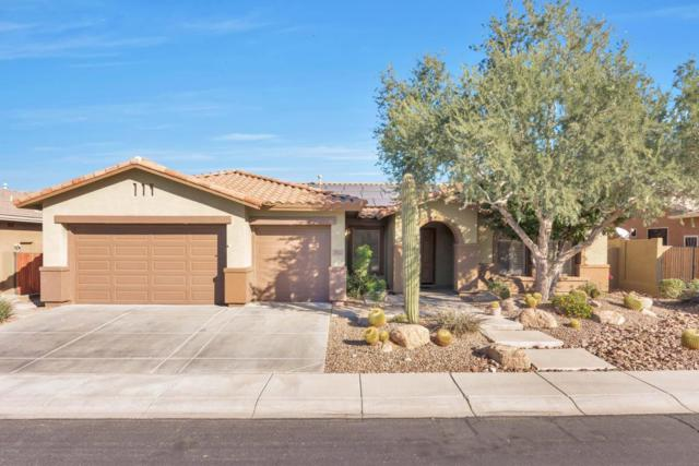 2922 W Sousa Drive, Anthem, AZ 85087 (MLS #5697116) :: Desert Home Premier