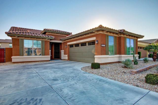 15117 W Glenrosa Avenue, Goodyear, AZ 85395 (MLS #5697131) :: Kelly Cook Real Estate Group