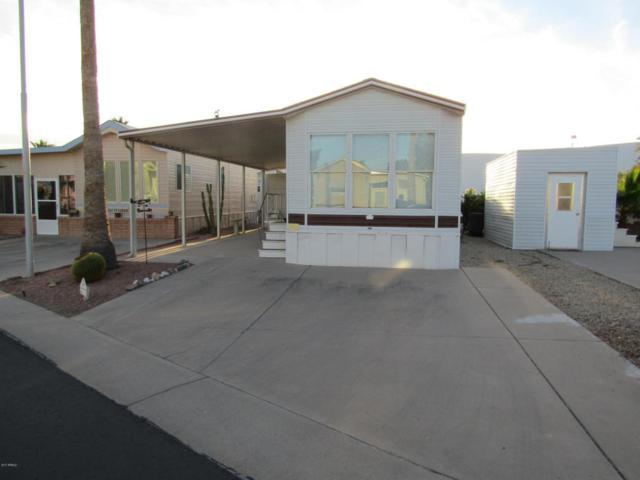 2918 S Cree Drive, Apache Junction, AZ 85119 (MLS #5697164) :: Yost Realty Group at RE/MAX Casa Grande