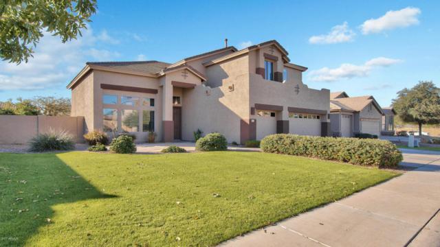 769 E Cherrywood Place, Chandler, AZ 85249 (MLS #5697168) :: Arizona Best Real Estate