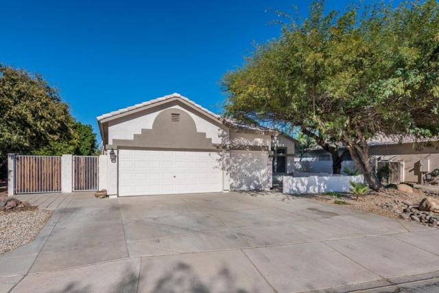 11402 W Cottonwood Lane, Avondale, AZ 85392 (MLS #5697170) :: Essential Properties, Inc.