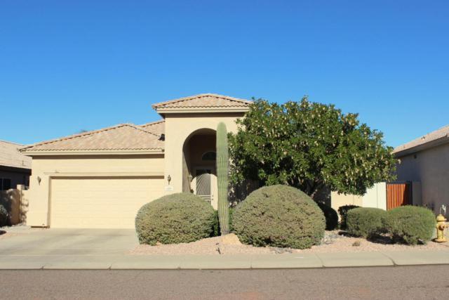 4558 E Roy Rogers Road, Cave Creek, AZ 85331 (MLS #5697177) :: Arizona Best Real Estate