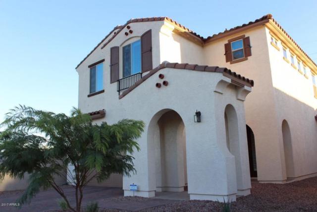 2945 E Aloe Place, Chandler, AZ 85286 (MLS #5697194) :: Arizona Best Real Estate